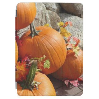 Happy Autumn Pumpkin iPad Air Cover