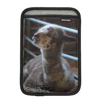Happy Baby Alpaca Smiles iPad Mini Sleeves