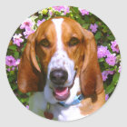 Happy Basset Hound Classic Round Sticker