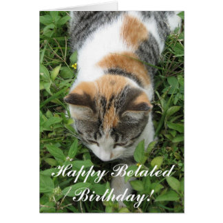 Happy Belated Birthday Calico Cat Greeting card