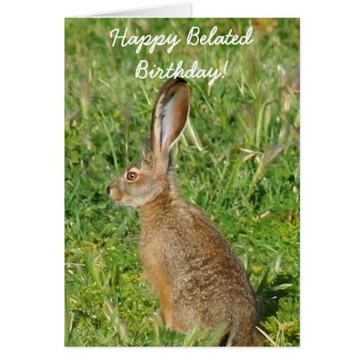Happy Belated Birthday Jack Rabbit greeting card