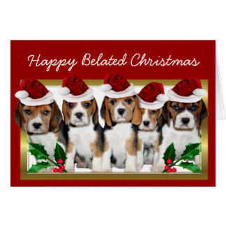 Happy Belated Christmas Beagle puppies card