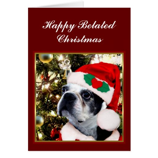 Happy Belated Christmas Boston terrier Greeting Cards