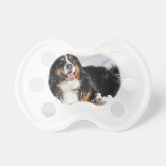Happy Bernese Mountain Dog In Winter Snow Baby Pacifier