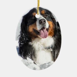 Happy Bernese Mountain Dog In Winter Snow Ceramic Oval Ornament