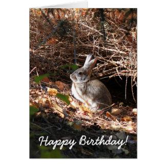Happy Birhday Bunny Rabbit Greeting Card
