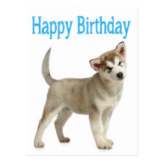 Pin Pomsky Dog Facts Ajilbabcom Portal Picture Cake on Pinterest