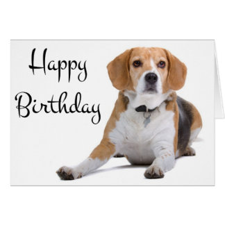 Happy Birthday Beagle Puppy Dog Greeting Card