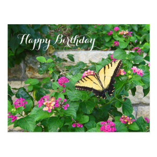 Happy Birthday Beautiful Butterfly Flowers Postcard