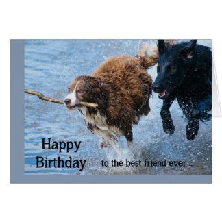 Happy Birthday Best Friend Fun Old & Crazy Dogs Card