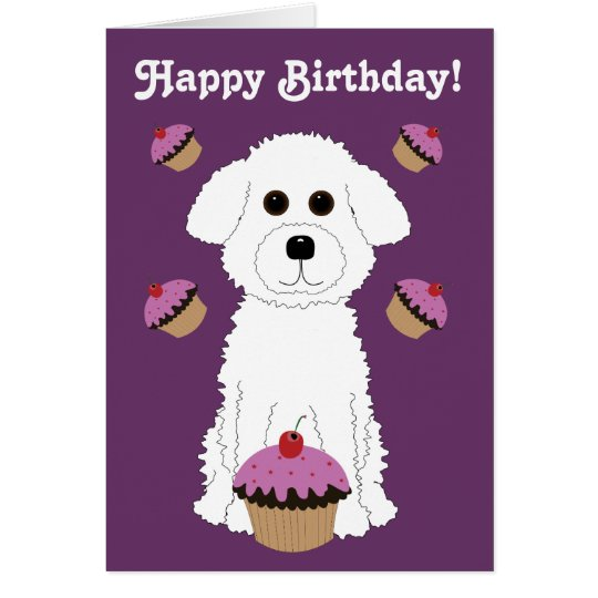 Happy Birthday Bichon with Purple Cupcakes Card