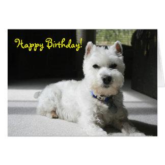 Happy Birthday, Blank, Mini Schnauzer Card