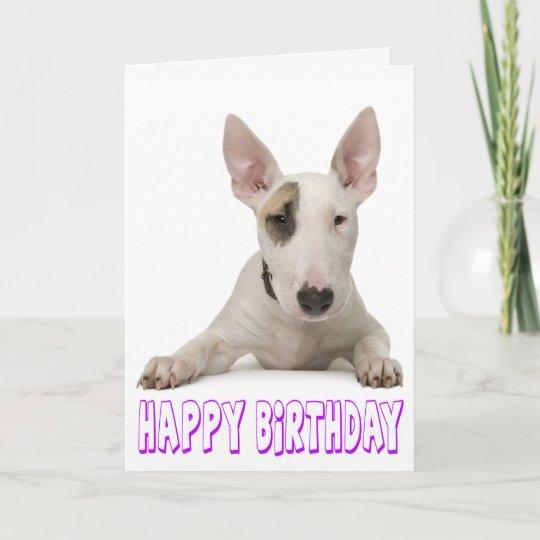 Happy Birthday Bull Terrier Puppy Dog Card Zazzle