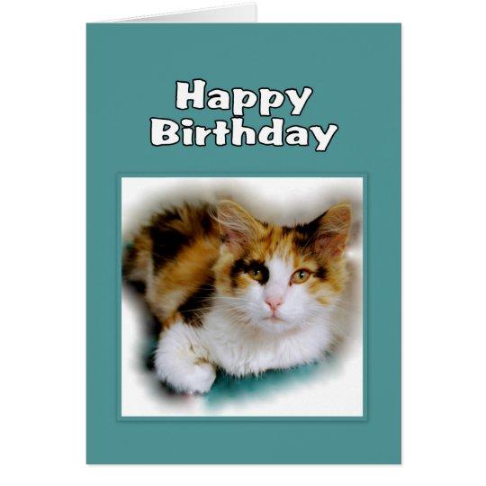 Happy Birthday Calico Cat Card