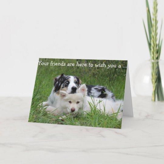 Happy Birthday Card Dogs