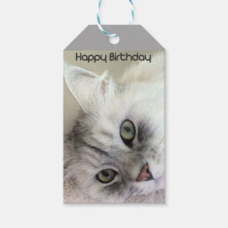 Happy Birthday Cat Lover Gift Tag