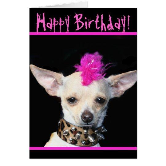 Cm Punk Dog S Birthday