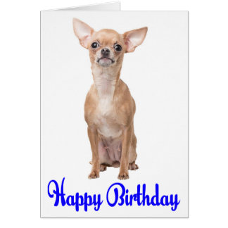 Happy Birthday Chihuahua Puppy Blue Verse Card