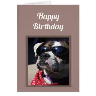 Happy Birthday Cool Dude Fun Boxer Dog Greeting Card