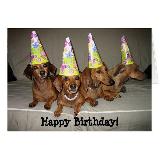 Dog Birthday Meme | funny happy birthday weiner dog MEMEs ... |Weiner Dog Birthday Memes