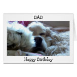 HAPPY BIRTHDAY DAD-TAKE NAP/DO WHATEVER U WISH GREETING CARD