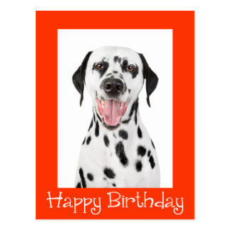 Happy Birthday Dalmatian Puppy Dog Post Card