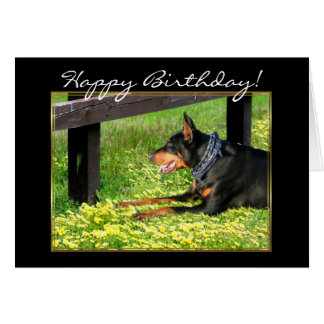 Happy Birthday Doberman Pinscher greeting card