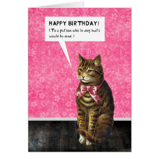 Cat lover birthday gifts