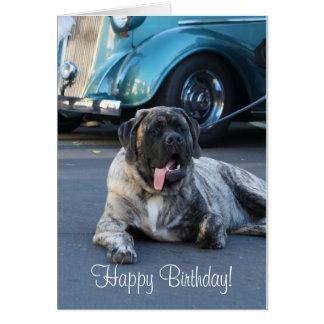 Happy Birthday English Mastiff Greeting Card