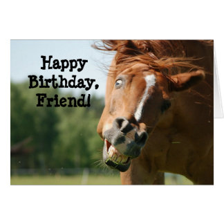 Funny Horse Birthday Cards, Photocards, Invitations & More