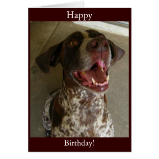 Happy Birthday from Happy Dog Card