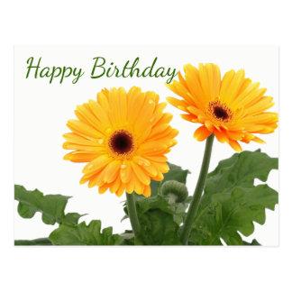 Happy Birthday Gerbera Daisy  Orange Green Flowers Postcard