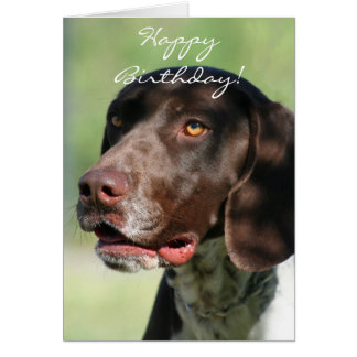 Happy Birthday German Shorthaired Pointer Card