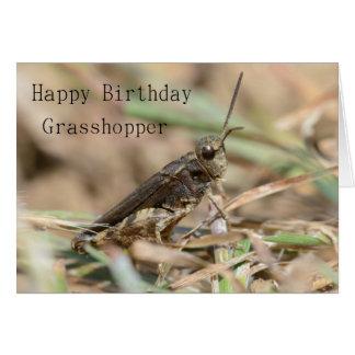 Happy Birthday Grasshopper Greeting Card