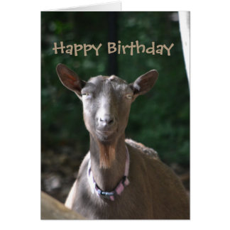 Happy Birthday Handsome Old Goat Card