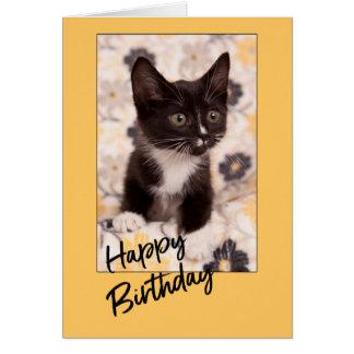Happy Birthday Kitten Blank Greeting Card