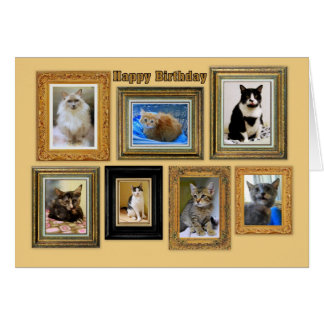 Happy Birthday Kitty Portrait Gallery Card