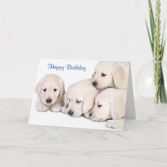 Happy Birthday Labrador Retriever Puppies Card Zazzle