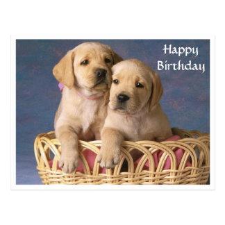Happy Birthday Labrador Retriever Puppy  Post Card