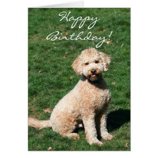 Happy Birthday Mini Goldendoodle greeting card