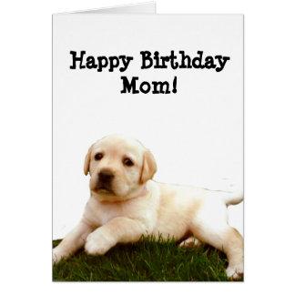 Happy Birthday Mom Labrador Puppy Greeting Card Re Ae Ce A Xvuat Byvr Jpg 324x324