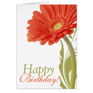 Happy Birthday Orange Gerbera Daisy Greeting Cards