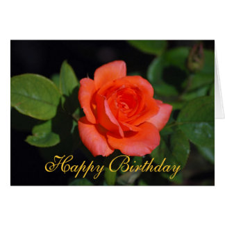 Happy Birthday Orange Grandiflora Rose Card