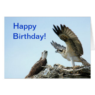 Happy Birthday osprey flapping wings Card