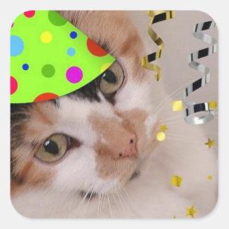 Happy Birthday Party Calico Cat Square Sticker