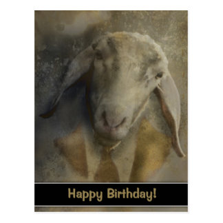 Happy Birthday! - Postard Postcard