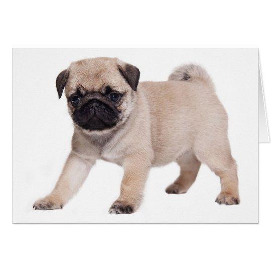 Happy Birthday Pug Puppy Dog - Verse Inside Card