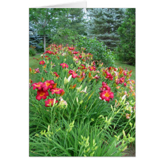 Happy Birthday -Red Lily Garden Card