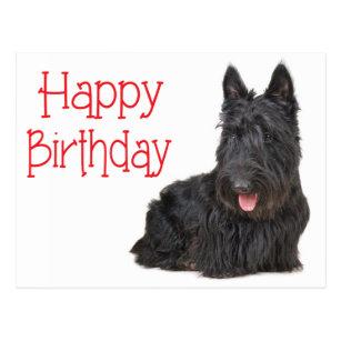 Scottish terrier birthday cards zazzle ca happy birthday scottish terrier puppy postcard m4hsunfo