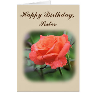 Happy Birthday Sister, Salmon Rose with Raindrops Card